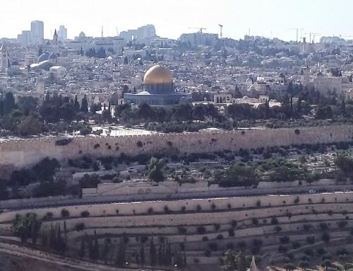 חדש – קו תחבורה לתצפית של ירושלים