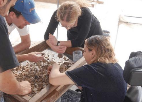 1 .מתנדבים נכים מ'בית הגלגלים' נוטלים חלק בעבודת הסינון