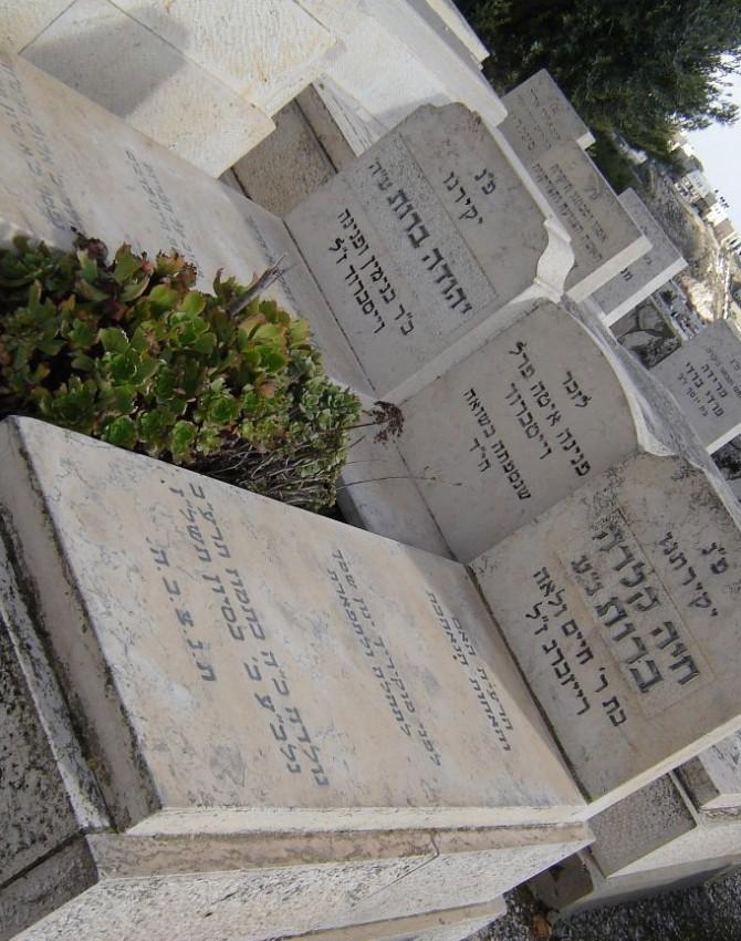 תמונת קבר חיה קלרה ברות