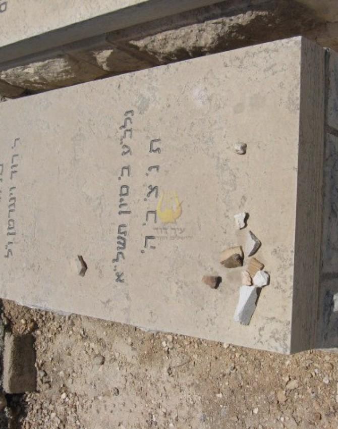 תמונת קבר חייה קירשנבוים