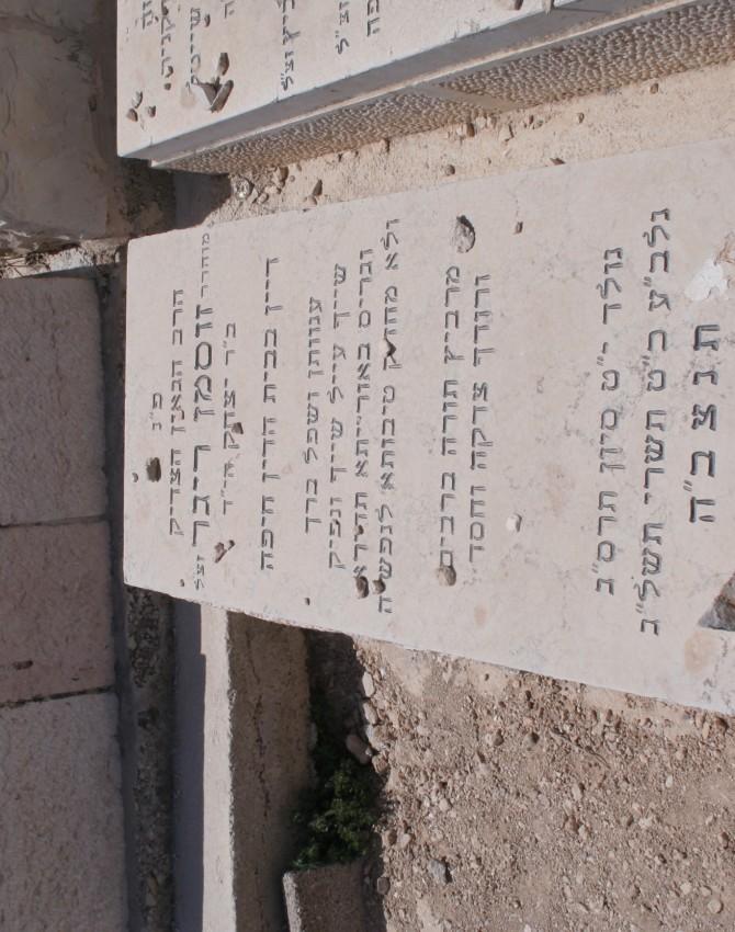 תמונת קבר זוסמן ריגר