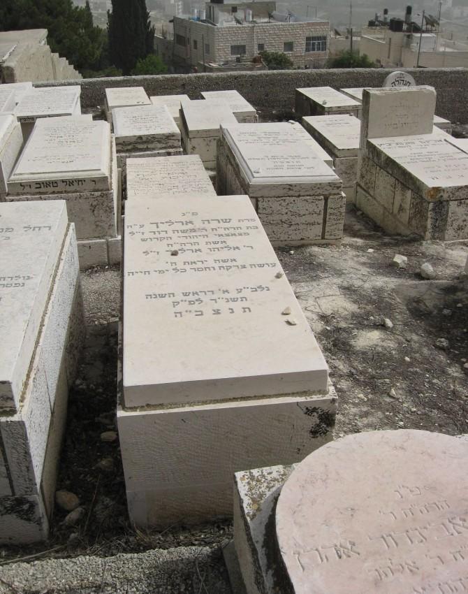 תמונת קבר שרה ארליך
