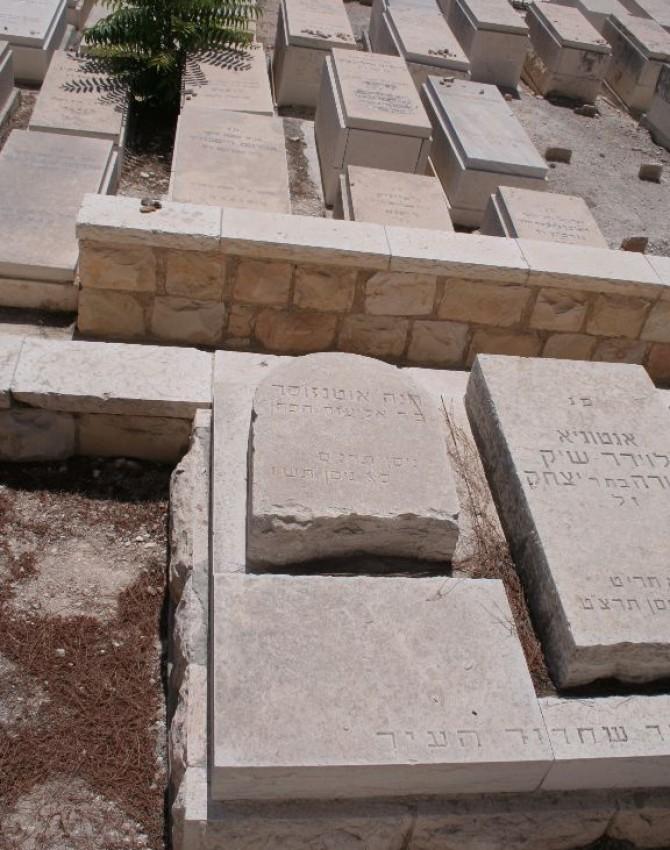 תמונת קבר חנה אוטנזוסר
