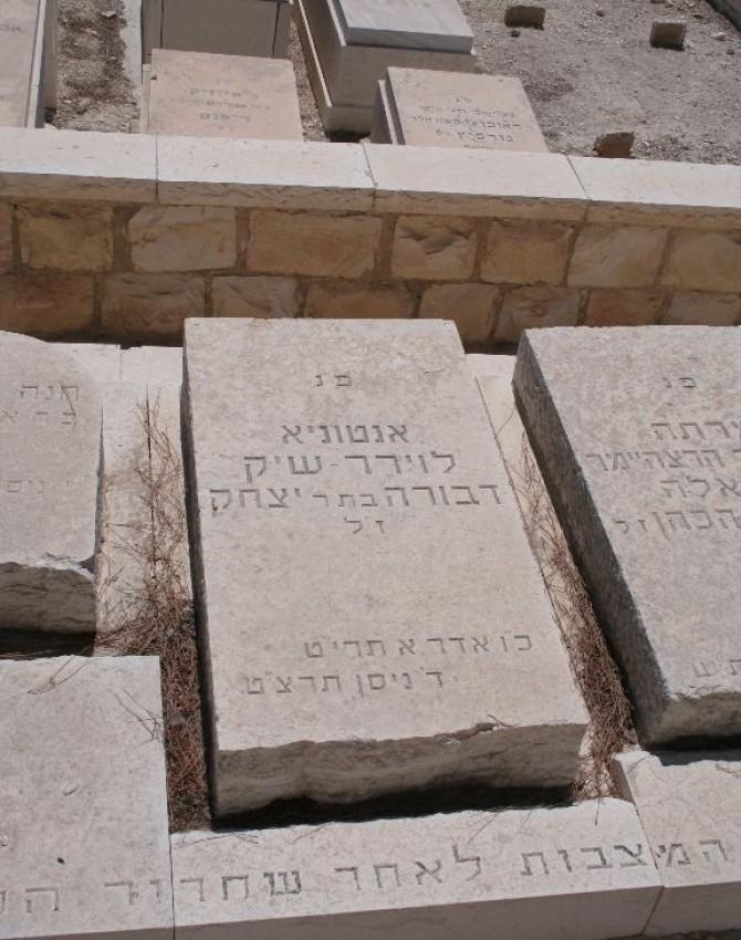 תמונת קבר דבורה לוירר - שיק